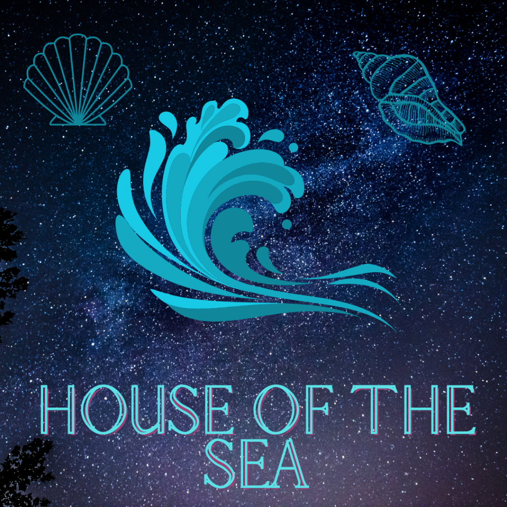 A blue wave depicting the ocean in the centre and two seashell outlines on the left and right. All on the background of a nights sky